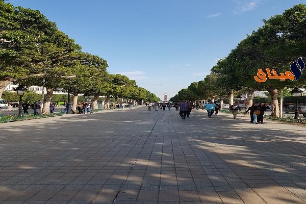 Iشارع الحبيب بورقيبة:تركيز مدينة ترفيهية للأطفال